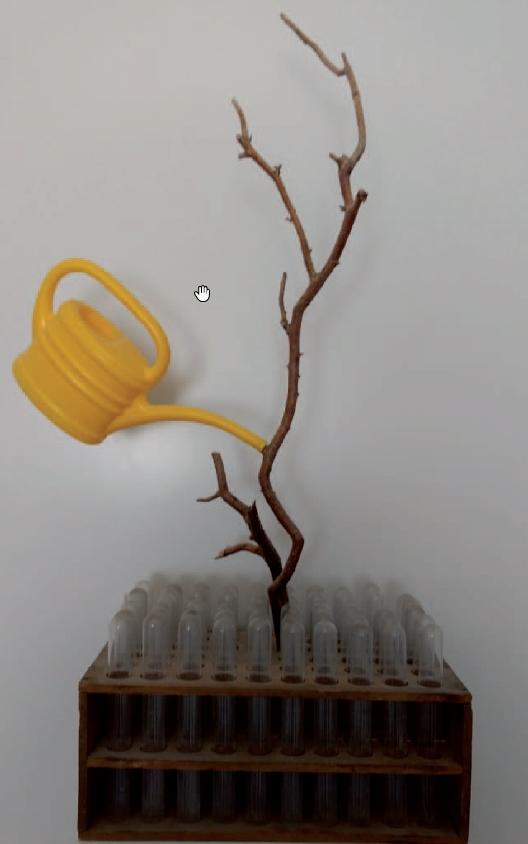 Gisela Dobler - Objekte/Installationen